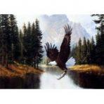 Signed print by Derk Hansen, Mountain Majesty (eagle)
