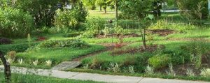 Midwest Permaculture site