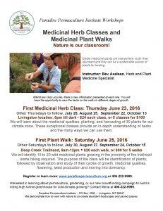 Medicinal Herbs Classes and walks 2016 series