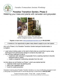 PPI Paradise Transition Garden Phase 2 Workshop