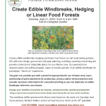 Paradise Permaculture Institute Workshop on creating edible windbreaks
