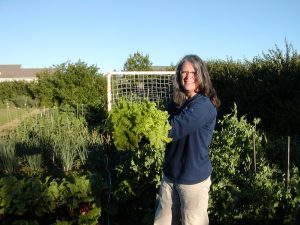 Photo of author Cheryl Moore-Gough holding harvest of Black Seed Simpson lettuce.
